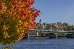 Bright Red-Orange Leaves on a Fall Day. Tree with bright red-orange leaves overlook Penobscot River in Bangor, Maine. Joshua Chamberlain Bridge and a distant stock photos