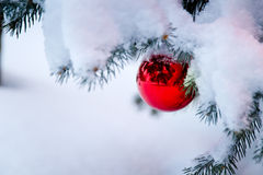 Bright red ornament hanging from a snow covered Ch Royalty Free Stock Image