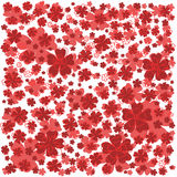 Bright red pattern with lined and colored flowers. Stock Photography