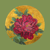 Bright red peony. In a circle Royalty Free Stock Photo