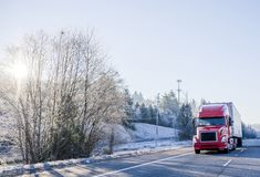 Bright red big rig semi truck with refrigerator semi trailer transporting cargo on straight winter highway frosty hill trees. Bright red popular big rig bonnet stock image