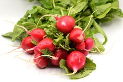 Red Radish on White Background. Bright red radishes with long green stems and leaves arranged on a seamless white background Royalty Free Stock Photography