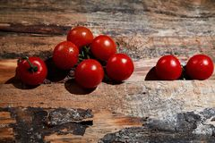 Bright red ripe tomatoes on branch covered with water drops composed on wood planks.  stock image