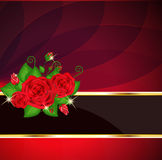 Bright Red Roses Card Stock Image
