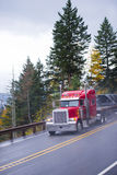 Bright red semi truck big rig classic style on rain road Royalty Free Stock Images
