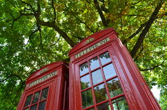 Bright red shiny telephone box. Royalty Free Stock Photography