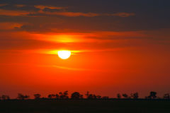Bright red sunrise Royalty Free Stock Photo