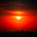 Bright red sunrise Stock Photos
