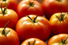 Bright red tomato Stock Photo