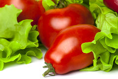 Bright red tomatoes and fresh green lettuce Royalty Free Stock Image