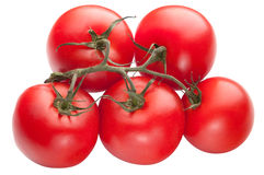 Bright red tomatoes isolated Royalty Free Stock Photos