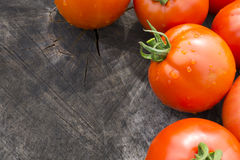 Bright Red Tomatoes on a Textured Wood Background Royalty Free Stock Photo
