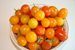 Bright red and yellow  cherry tomatoes Royalty Free Stock Photo