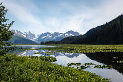 Bright reflection of snow capped mountains in Alaskan  pond. Bright reflection of snow capped mountains in pond in Alaskan wilderness in summer Stock Photography