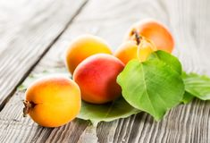Bright ripe juicy apricots Royalty Free Stock Photos