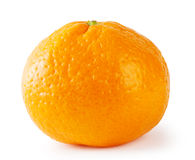 Bright ripe tangerine Stock Images