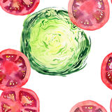 Bright ripe tasty delicious beautiful agriculture summer salad green cabbage and red tomatoes chopped and sliced pattern watercolo. R hand illustration. Perfect Royalty Free Stock Photography