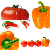 Bright ripe tomatoes and peppers Stock Images