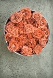 Pink Roses in bowl stock images
