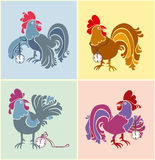 Bright roosters to watch. Stock Photos
