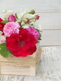 Bright roses and english dogwood bouquet Royalty Free Stock Photography