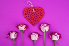 Bright roses with a red wooden heart. Top view of red roses on pink background. Valentines day concept stock photography