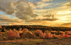 Bright rural autumn landscape at sunset Royalty Free Stock Image
