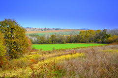 Bright rustic autumn landscape Royalty Free Stock Images