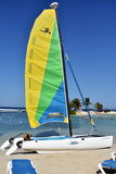 Bright sail Stock Images