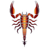 Bright scorpion, zodiac Scorpio sign Stock Images