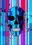 Bright scull Stock Photography