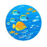 Bright sea pattern with tropical fish. Royalty Free Stock Photos