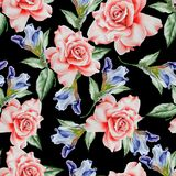 Bright seamless pattern with flowers. Rose. Iris. Watercolor illustration. Stock Photos