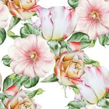 Bright seamless pattern with flowers. Rose. Mallow.   Watercolor illustration. Royalty Free Stock Photography