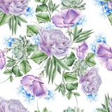 Bright seamless pattern with flowers. Rose. Petunia. Hyacinth. Succulent. Watercolor illustration. royalty free stock photos