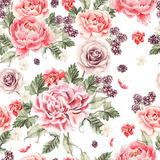 Bright seamless pattern with peony flowers , roses and blackberries . Illustration Stock Photo