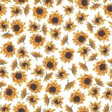 Bright seamless pattern with sunflowers. Hand drawn watercolor flowers. vector illustration