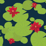 Bright seamless pattern with water lilies (or lotuses). Stock Photos