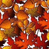 Bright Seamless Pattern With Autumn Leaves Of Trees. Royalty Free Stock Photo