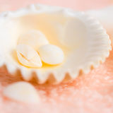 Bright seashells on soft pink terry texture, closeup Royalty Free Stock Photography