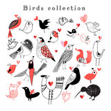 Bright set of birds Royalty Free Stock Photography