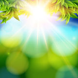 Bright shining sun with lens flare. Abstract spring background w Royalty Free Stock Photos