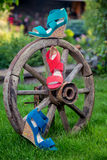 Bright shoes, women's sandals, shoes in the garden. A Stock Photography