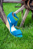 Bright shoes, women's sandals, shoes in the garden. A Royalty Free Stock Image