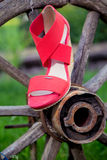 Bright shoes, women's sandals, shoes in the garden. A Royalty Free Stock Images