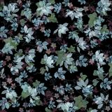 Bright silvery leaves on black background Royalty Free Stock Image