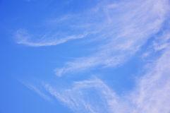 Bright sky with cloud. royalty free stock image