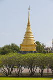 Bright sky field grass and gold pagoda Wat Phra That Chang Kham, Stock Photos