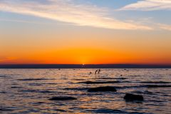 Bright sky and water at sunset Stock Photography