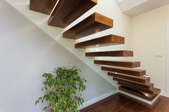 Bright space - stairs and plant Stock Images